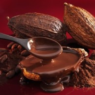 karl-newedel-chocolate-sauce-cocoa-powder-cocoa-beans-and-cacao-fruits